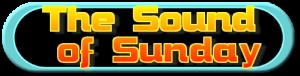 sos 2010 logo transparent